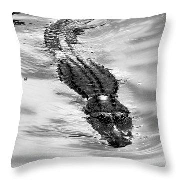 Swimming Gator Throw Pillow