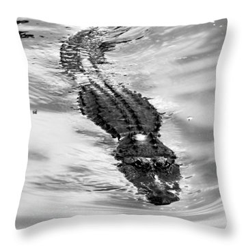 Swimming Gator Throw Pillow