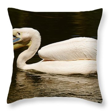 Swimming Pink Pelican Throw Pillow