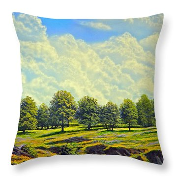 Table Mountain In Bloom Throw Pillow by Frank Wilson