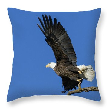Take Off 2 Throw Pillow by David Lester