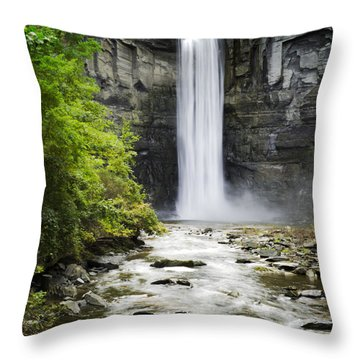 Taughannock Falls State Park Throw Pillow by Christina Rollo