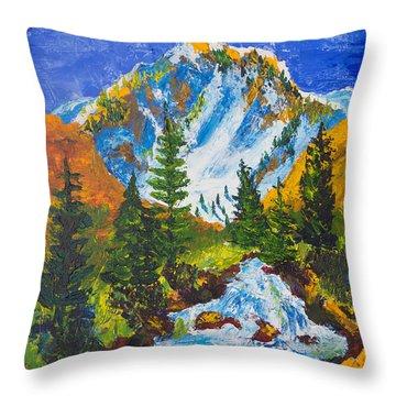 Taylor Canyon Run-off Throw Pillow