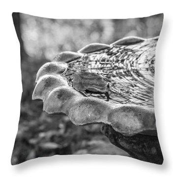 Tennessee Birdbath Throw Pillow