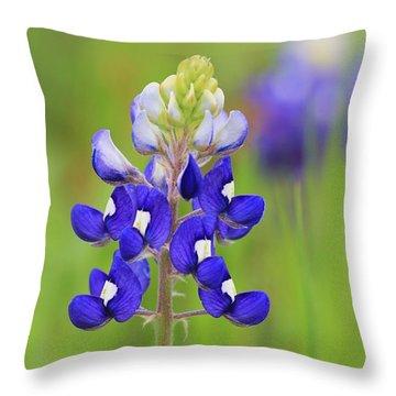 Throw Pillow featuring the photograph Texas Bluebonnet by Elizabeth Budd