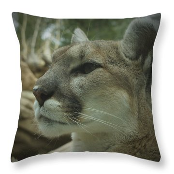The Cougar 3 Throw Pillow by Ernie Echols