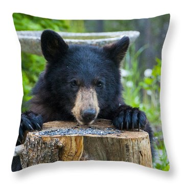 The Cub That Came For Lunch 7 Throw Pillow