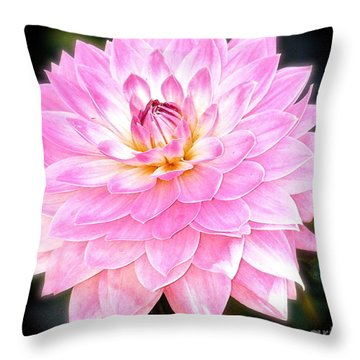 The Vivid Pink Dahlia Throw Pillow by Margie Amberge