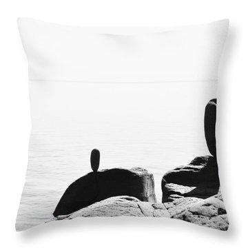The Expanse Throw Pillow