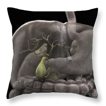 The Gallbladder Throw Pillow