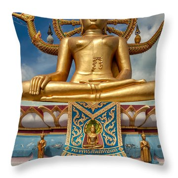 The Lord Buddha Throw Pillow by Adrian Evans