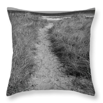 Throw Pillow featuring the photograph The Path by Glenn DiPaola