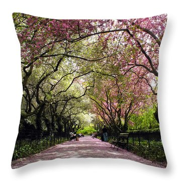 The Path Throw Pillow by Yue Wang
