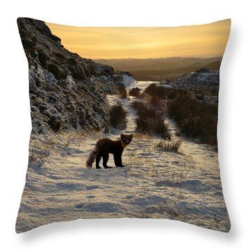 The Pine Marten's Path Throw Pillow