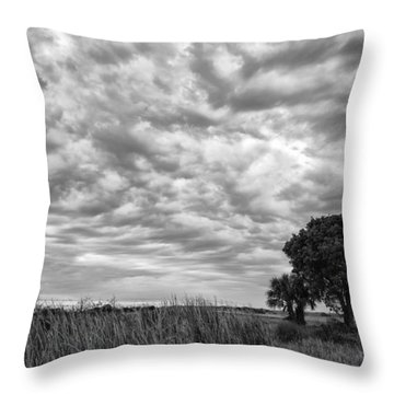 The Right Tree Throw Pillow