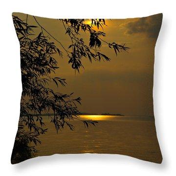 The Shining Light Throw Pillow by Judy  Johnson