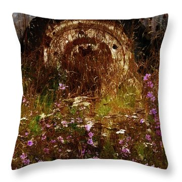The Spare Wheel  Throw Pillow by Steve Taylor