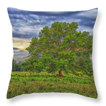 Throw Pillow featuring the photograph The Tree by Geraldine DeBoer