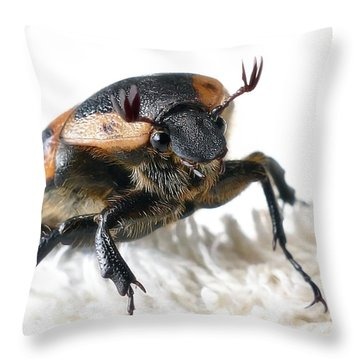 The Warrior 01 Throw Pillow