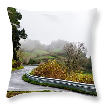The Winding Road Throw Pillow