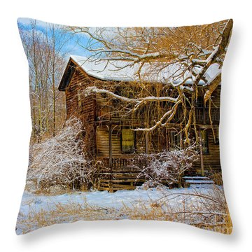 This Old House Throw Pillow