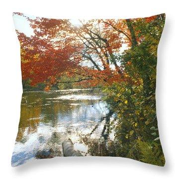 Thompson Landing Throw Pillow