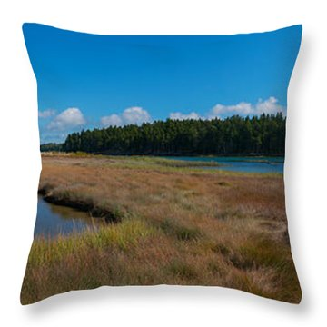 Thompson Island In Maine Panorama Throw Pillow