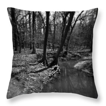 Thorn Creek Throw Pillow