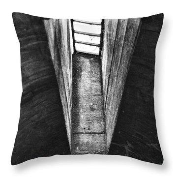 Through The Pane Throw Pillow by Scott Wyatt