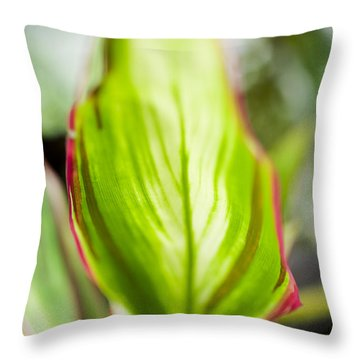 Ti-leaf Macro Throw Pillow
