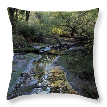 Throw Pillow featuring the photograph Tidal Stream by I'ina Van Lawick