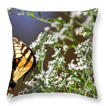 Tiger Throw Pillow by Reid Callaway