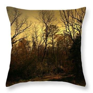 Time Of Long Shadows Throw Pillow by Nina Fosdick