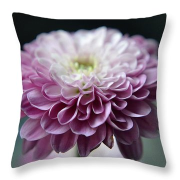 Tiny Treasures Throw Pillow by Melanie Moraga