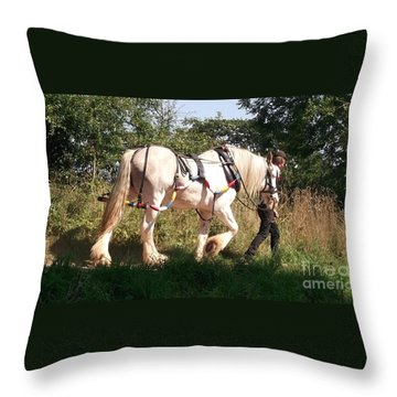 Tiverton Barge Horse Throw Pillow by John Williams