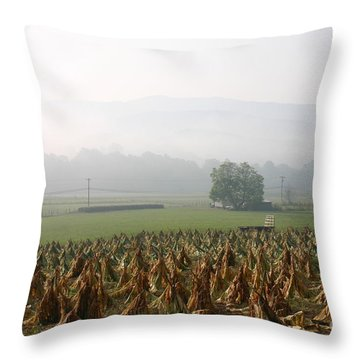 Tobacco In The Field Throw Pillow
