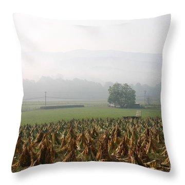 Tobacco In The Field Throw Pillow by Annlynn Ward