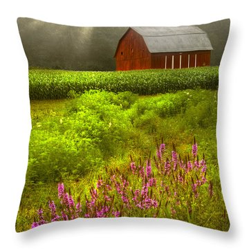 Touched By The Sun Throw Pillow