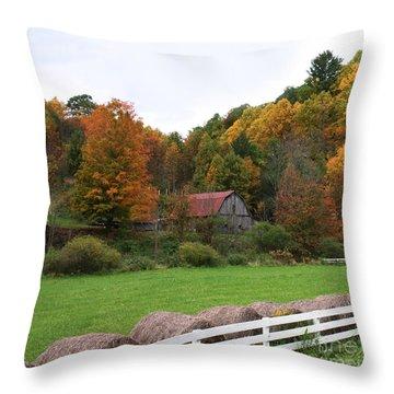 Trade Barn Throw Pillow by Annlynn Ward