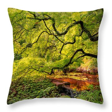 Tranquil Shade Throw Pillow