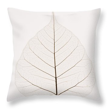 Transparent Leaf Throw Pillow by Kelly Redinger