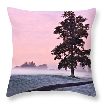 Tree At Dawn / Maynooth Throw Pillow