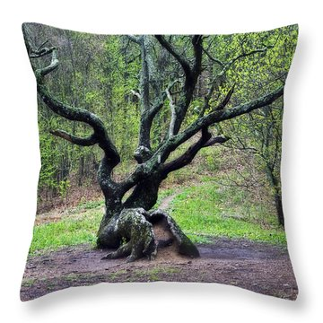 Tree In The Forest Throw Pillow