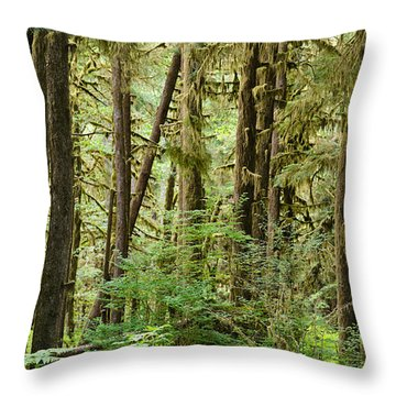 Trees In A Forest, Quinault Rainforest Throw Pillow