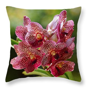 Throw Pillow featuring the photograph Tropical Bouquet by Blair Wainman