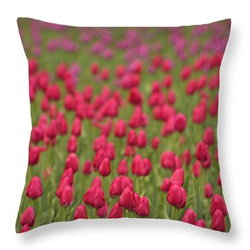 Tulip Beds Forever Throw Pillow