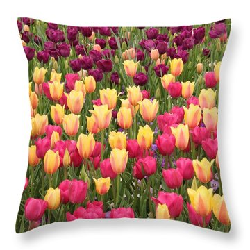 Throw Pillow featuring the photograph Tulips by Elizabeth Budd