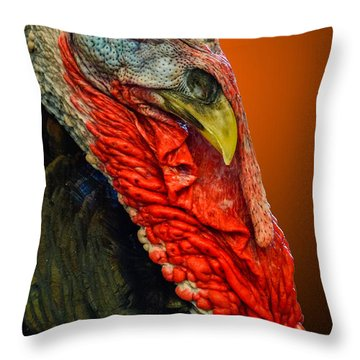 Throw Pillow featuring the photograph Turkey by Brian Stevens