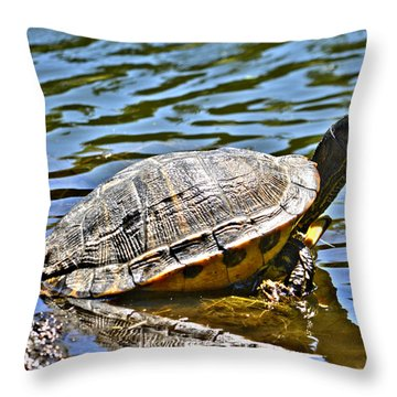 Throw Pillow featuring the photograph Turtle by Janice Spivey