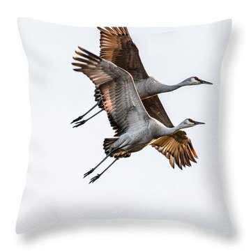 Two Sandhill Cranes Throw Pillow
